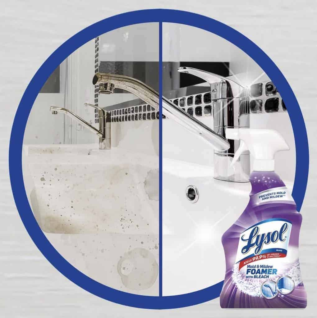 does lysol kill mold