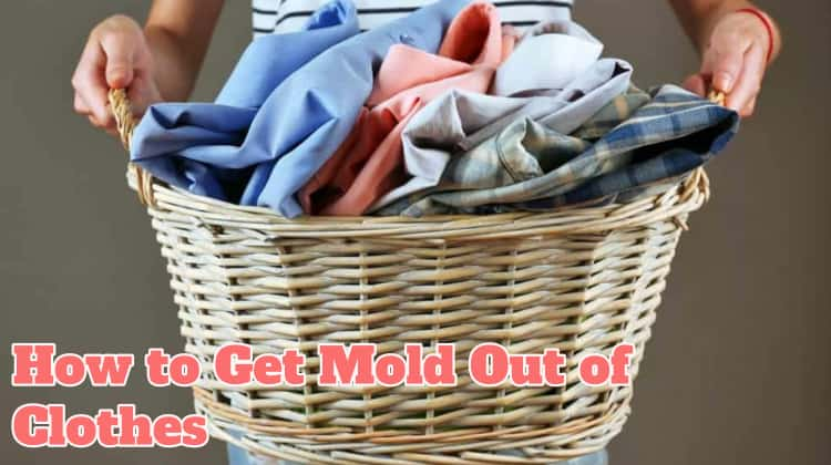 How to Get Mold Out of Clothes
