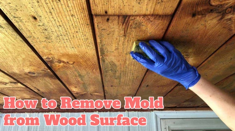 How to Remove Mold from Wood Surface