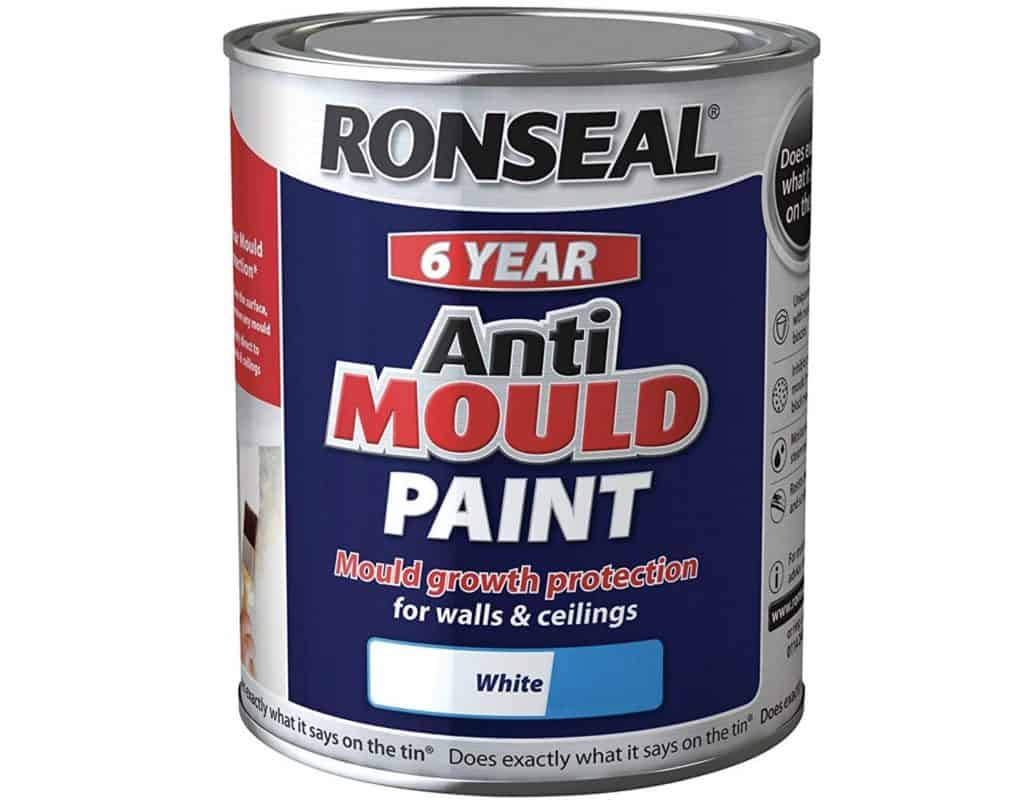 Guide To Mold Resistant Paint And Recommendations Mold